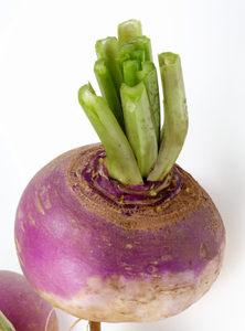 Zelenina tuřín