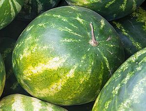 Zralý meloun